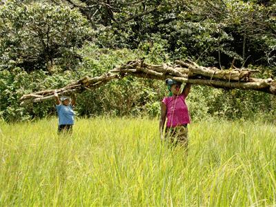 Unterstützung eines Projektes zum Erhalt des Kakamega Regenwaldes durch CO2-Kompensation mit Einsparung von Feuerholz durch Verwendung neuer Oefen